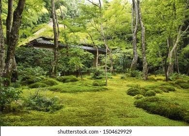 Giouji temple (Giou-ji) in summer season. Kyoto, Japan.