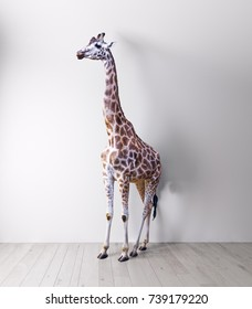 the giraffe in the white room . Media mixed concept