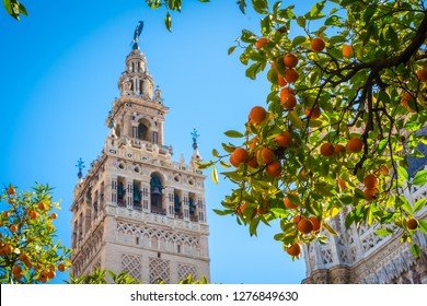 Giralda and orange tree courtyard, It's the name given to the bell tower of the Cathedral of Santa Maria de la Sede of the city of Seville, in Andalusia, Spain.
