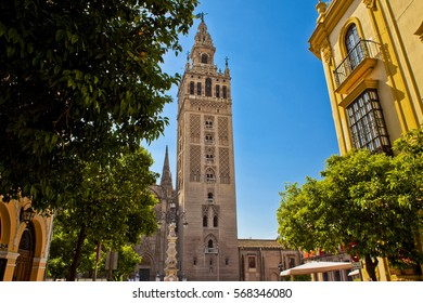 Giralda tower in Seville with blue sky and orange trees