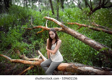 girl alone in the woods at sunset, sitting on a dry tree in casual clothes. loneliness, depression, negative emotions