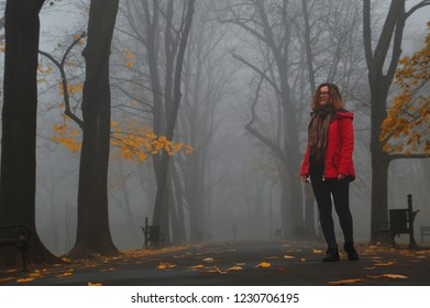 The girl in the autumn walks in the park, the fog on the street, yellow beautiful leaves