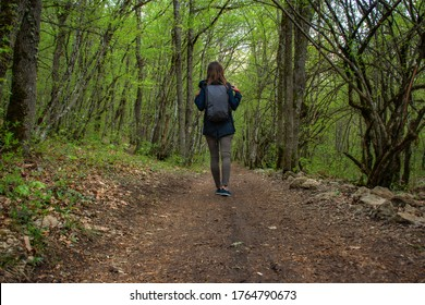 A girl with a backpack is walking through the forest. One tourist in the forest. Healthy lifestyle. Traveling alone. Summer holiday. Beautiful green forest with a path. Concept of Hiking.