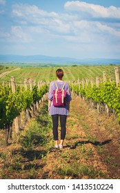 Girl backpacker standing in vineyard on a sunny day looking to beautiful countryside landscape in Vojvodina region in Serbia