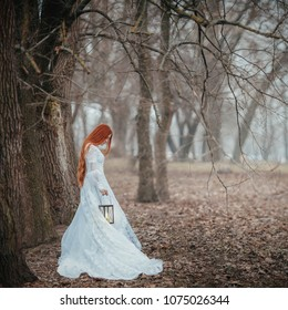 Girl in beautiful white vintage dress with lantern walking through silent forest