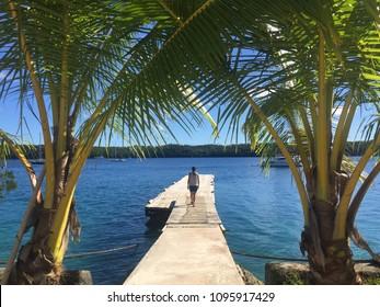 Girl between palms in Vava'u, Kingdom of Tonga.