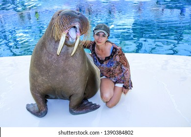 A girl and a big walrus in a pool.