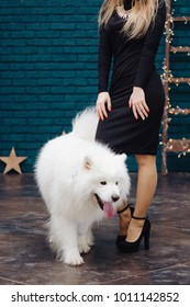 Girl in black dress and white dog