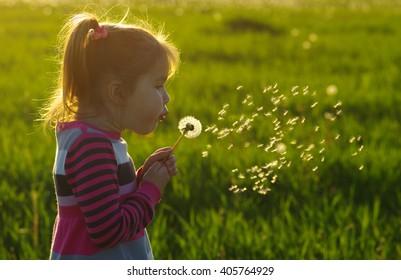 Girl blowing dandelion outdoors in spring field
