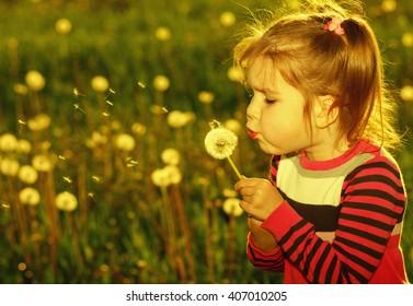 Girl blowing dandelion outdoors in spring field, warm tone
