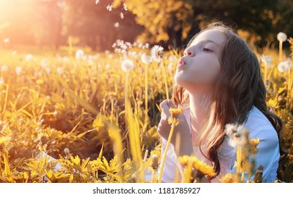 Girl blowing seeds from a flower dandelion in the autumn afternoon
