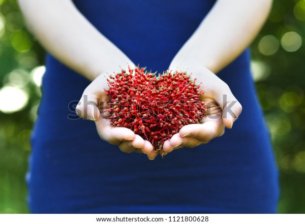 Girl in blue dress holding heart shaped red berries
