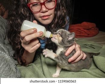 A girl bottle feeding a calico kitten. The kitten is raising her paw as she drinks.