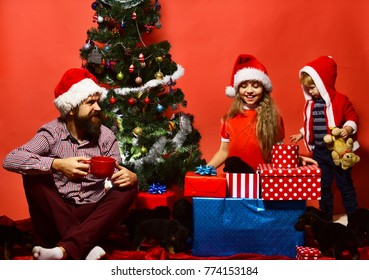 Girl, boy and man with tea in xmas hats near puppies. Kids with cheerful faces unpack presents on red background. Sister and brother siblings look at dogs near Christmas tree. New year gift concept