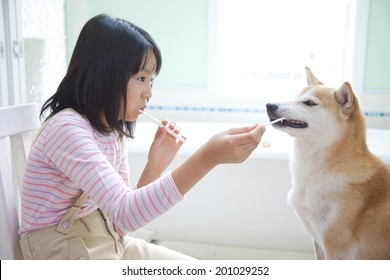 Girl brushing her teeth with Shiba Inu