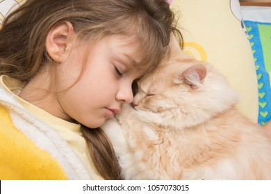 A girl and a cat sweetly sleep in bed, burying each other