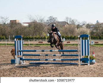 A girl caucasian horserider  jumping over hurdle with her beautiful brown sport pony