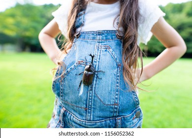 Girl caught the beetle