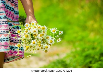 Girl with chamomile. Selective focus.