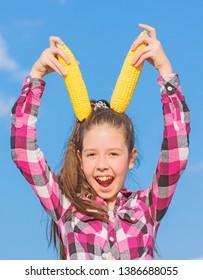 Girl cheerful hold ripe corns. Corn vegetarian and healthy organic product. Harvesting and fun. Kids love corn food. Vegetarian nutrition concept. Kid girl hold yellow corn cob on sky background.
