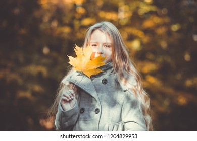 girl child with a leaf in her hand autumn in a park forest against a background of yellow leaves in a gray coat standing smiling september october schoolgirl walks in a park portrait blonde toned phot