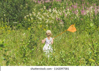 girl, a child with a net catches a butterfly on a Sunny summer day