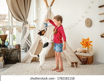 Girl-Kind-Training Fox-Terrier-Hund im hellen Kinderzimmer