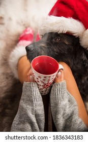 Girl in Christmas socks enjoying a winter time with her dog and cup of hot tea.