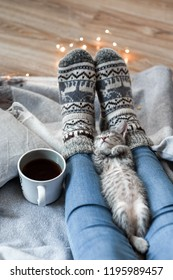 A girl in Christmas socks sitting on a plaid with gray kitten