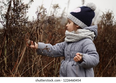 the girl collects dried flowers