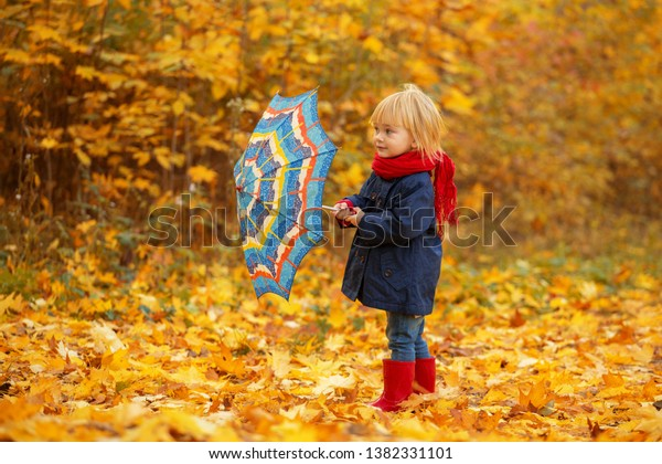 A girl with a colorful umbrella is walking around an autumn park.