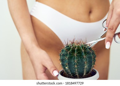 The girl cuts a large cactus with scissors in the groin area. The concept of intimate hygiene, epilation and depilation, deep bikini shaving