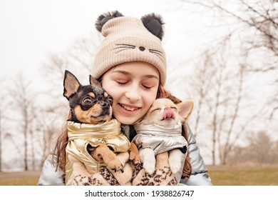 girl, dog. Teenage girl with two chihuahua dogs in her arms. Dogs in clothes. friend owner puppy.