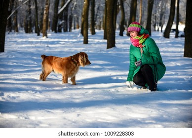 girl with a dog walks in the winter on the snow