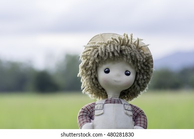 Girl doll on a background blur of fields.