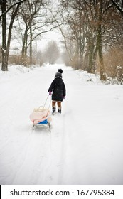 Girl is dragging her bobsleigh in the snow-covered forest in the winter