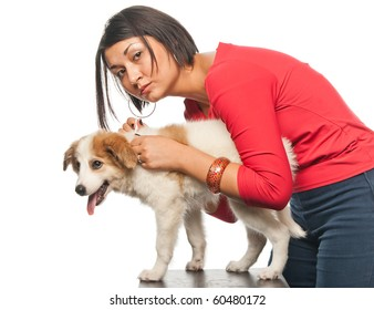 Girl drips a remedy from fleas and parasites to her dog