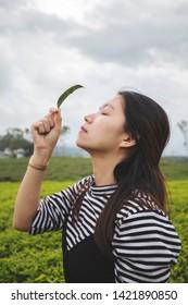 The girl enjoying the fresh air on the tea hill.
