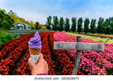 A girl enjoying her Lavender ice cream at a farm in Furano, Hokkaido, Japan