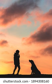 Girl enjoying the sunset with her beloved pet