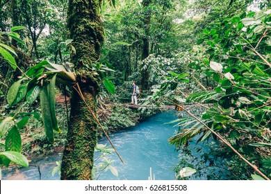 Girl exploring the rainforest over the rio azul , Tenorio NP, Costa Rica