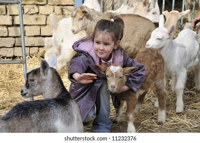 girl in the farm with little goats