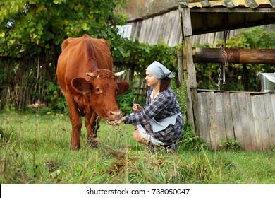 the girl the farmer feeds the cow near the well