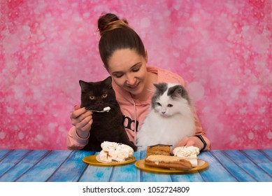the girl feeds seals with cakes