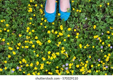 Girl feet on lush green grass and fresh spring flowers