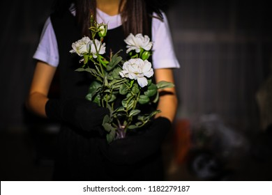 Girl and flowers on Halloween night
