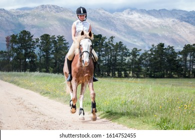 Girl galloping on a Sabino paint horse on a dirt road bareback and without a bridle towards the camera.
