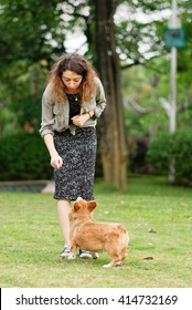 Girl giving food to her pembroke welsh corgi dog on green grass