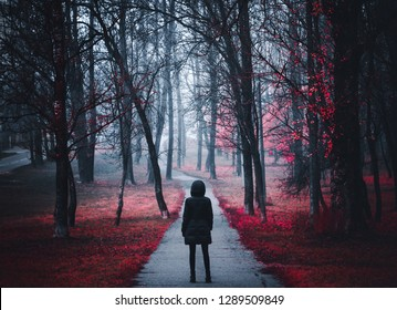 Girl goes on the road in the forest. Strange forest in a fog with red leaves. Background Mystical atmosphere. Dark mysterious park in a fog. Scary forest with red flowers lit by moon