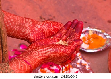 Girl hand decorated with heena color on ocassion of her marriage-image